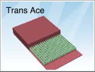Trans Ace